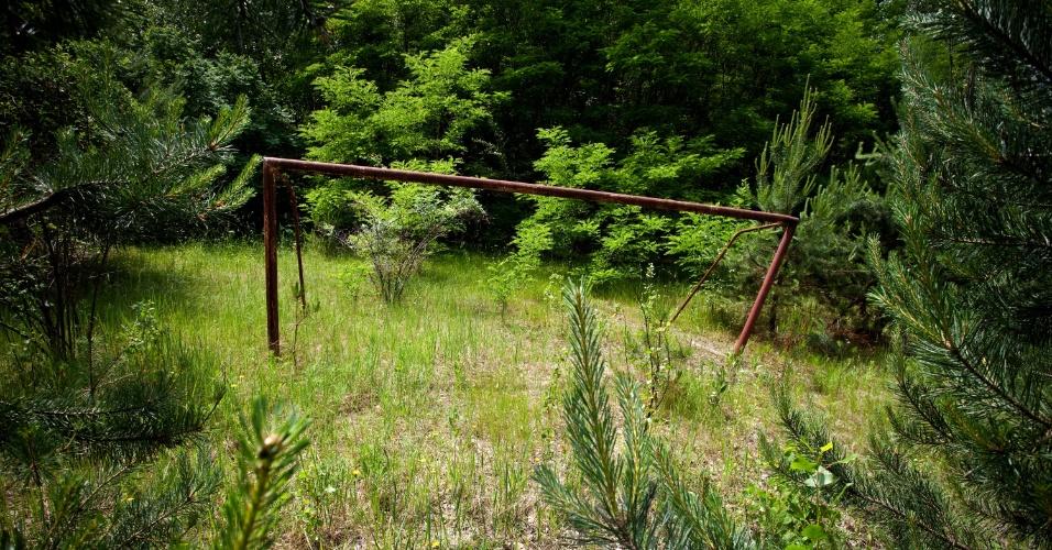 Campo de futebol abandonado acabou se tornando uma floresta