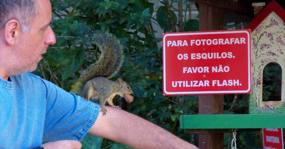 Nelson Tavares Pacheco Júnior mostra um dos esquilos que cria em Monte Verde (MG)