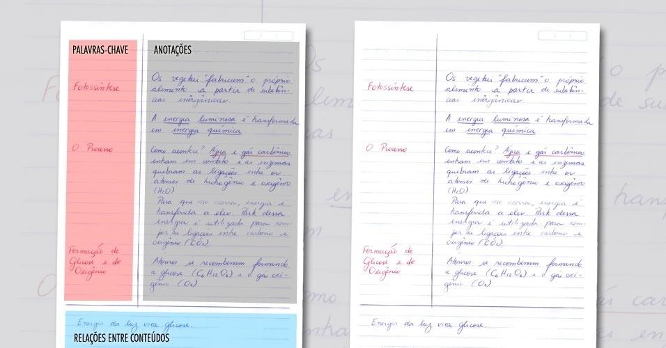 anotação, anotações, estudo, vestibular
