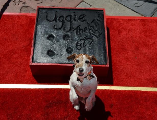 """Após estrelar em """"O Artista"""", Uggie teve suas patas imortalizadas em Hollywood (25/6/12) - Robyn Beck/Reuters"""