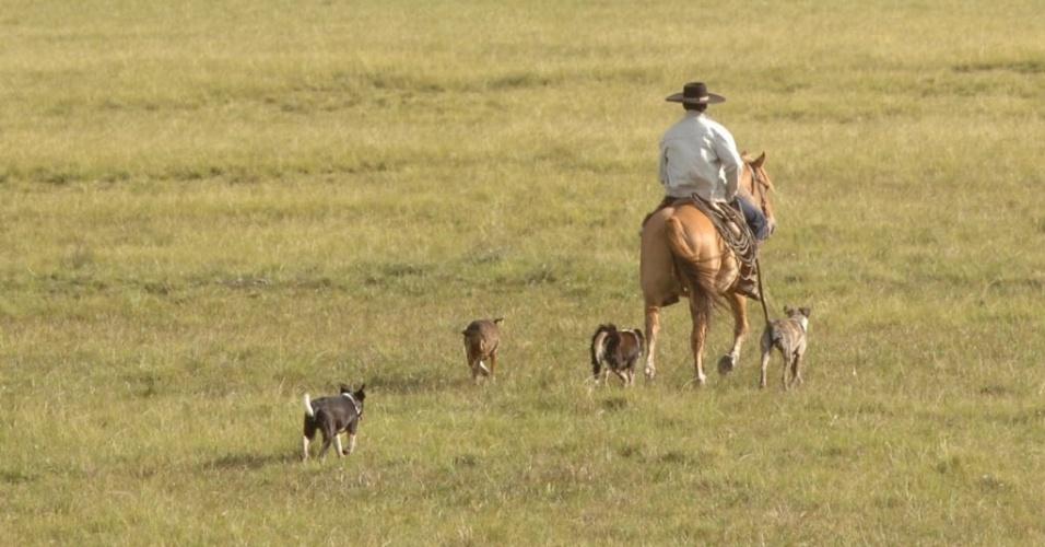 28.jun.2012 -  Gaúcho cavalga por pampa, na cidade de Bagé, Rio Grande do Sul, Estado cuja taxa média de crescimento anual da população residente foi de apenas 0,49% entre 2000 e 2010