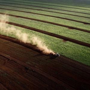 O diuron é um herbicida amplamente utilizado nas culturas de soja e cana-de-açúcar no Brasil - Eduardo Knapp/Folhapress
