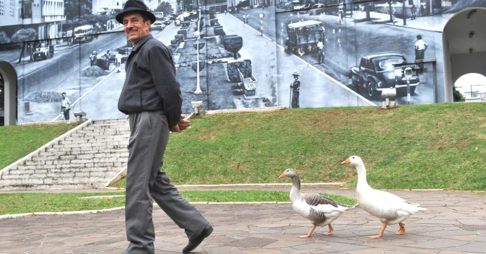 2.jul.2012 - Militar reformado Adão Martins, 73, leva seus gansos de estimação para passear pelas ruas de Santa Maria, no Rio Grande do Sul