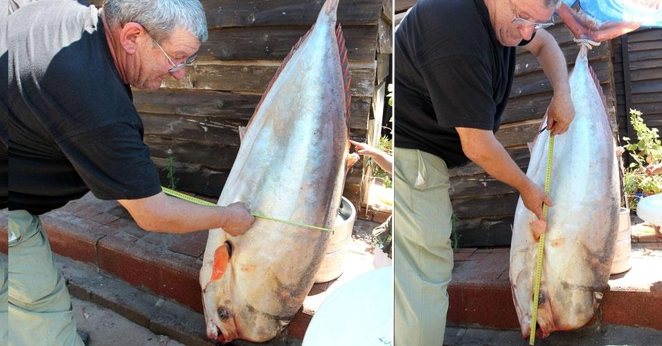 3.jul.2012 - Turistas observam peixe achado na praia de Palombaggia, na ilha mediterrânea de Córsega (Itália)