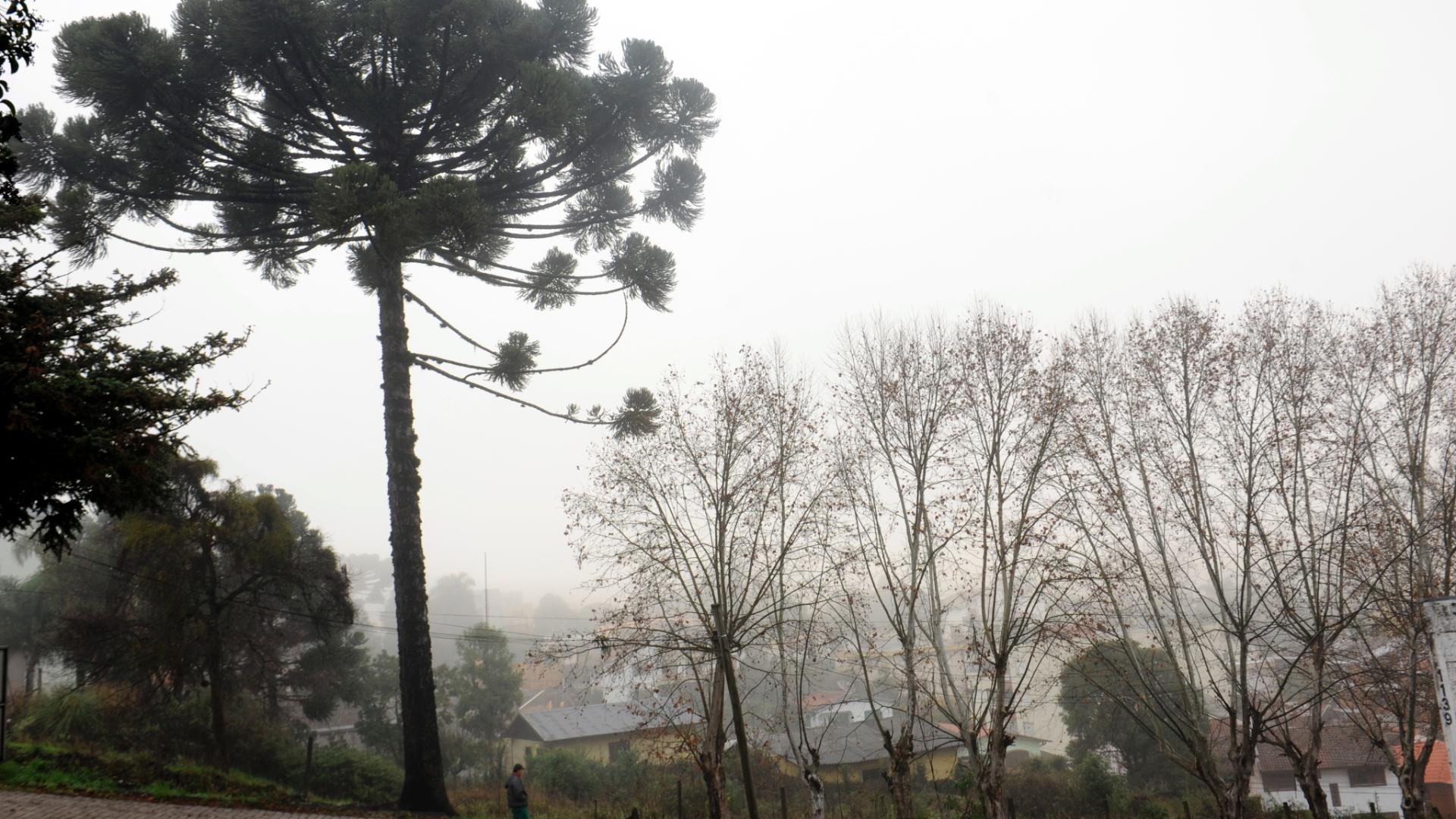 11.jul.2012- Caxias do Sul (RS) registrou baixas temperaturas, nesta quarta-feira. Por volta de 7h da manhã, a cidade teve mínima de 5ºC