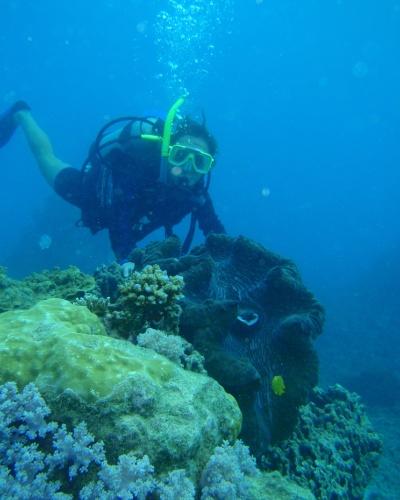 Juliana Belda mergulhando em uma grande barreira de corais, na cidade de Cairns.