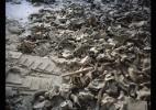 A explosão de um reator nuclear de Chernobyl causou mortes e contaminação. Teste-se - Rena Effendi/Prix Pictet