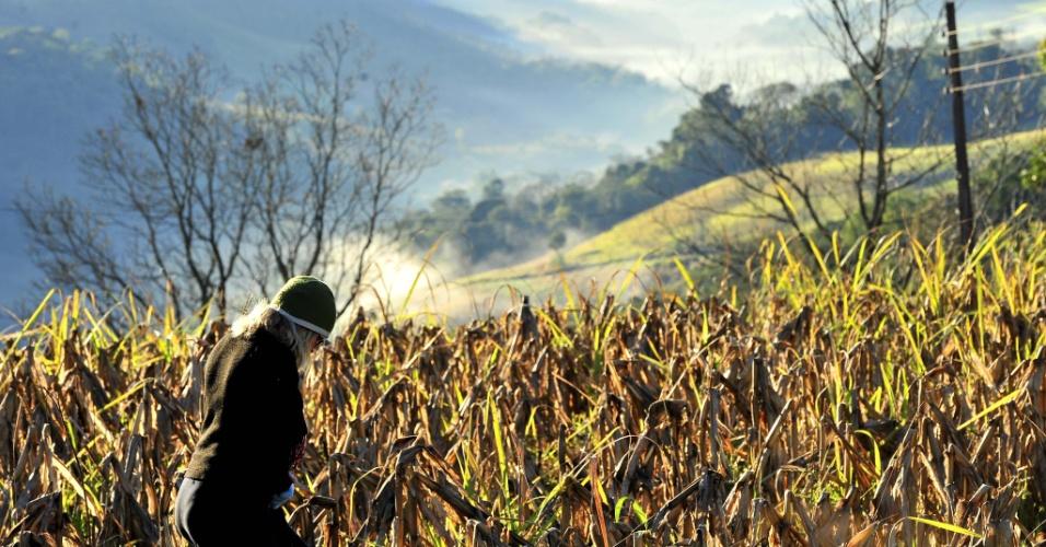 20.jul.2012 - Apesar do sol, a serra catarinense, em Guaraciaba (SC), enfrentou dia frio, nesta sexta-feira fria.  A cidade de Urupema (SC) registrou a temperatura mínima de -4C