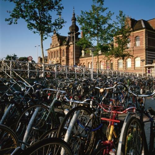 Universidade de Groningen