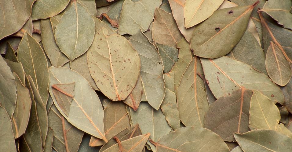 Louro, folhas de louro