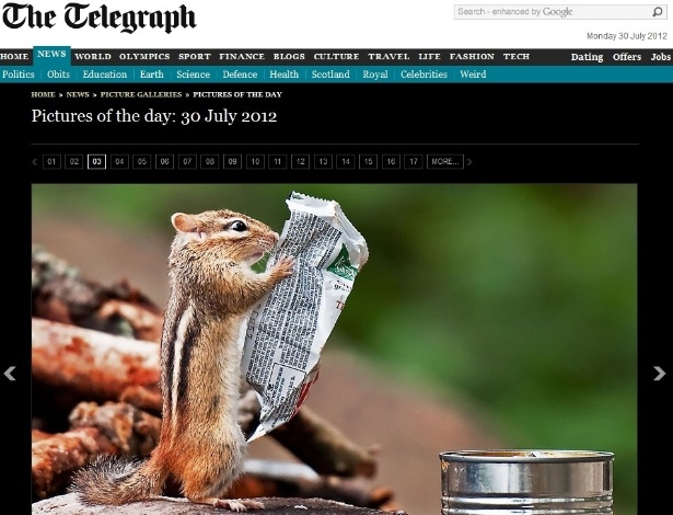 """E quem disse que os animais também não se preocupam com as calorias e os nutrientes do alimento? Esquilo é flagrado segurando embalagem, como se estivesse lendo as informações nela escritas. A cena foi registrada pelo fotógrafo Michael Higgins em um parque em Ontário, no Canadá, segundo o jornal inglês """"Daily Telegraph"""""""