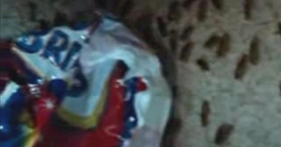 4.ago.2012 - Baratas infestam prateleiras da cozinha da Penitenciária Regional Irmão Guido, na zona rural de Teresina