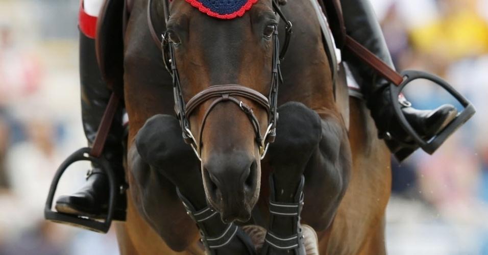 Close no cavalo Bernadien van Westuur durante prova de saltos do hipismo (05/08/2012)