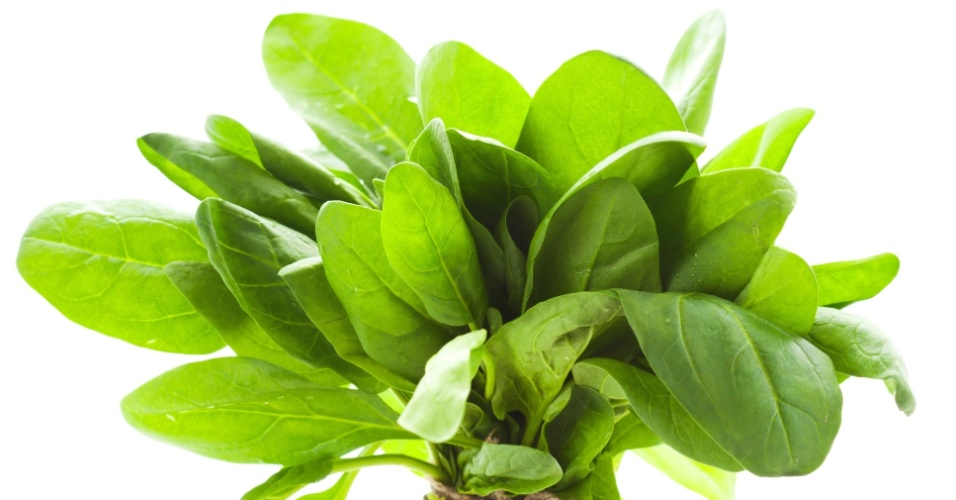 A espécie de espinafre mais consumida no Brasil é Tetragonia tetragonoides, nome popular espinafre-da-nova-zelândia. A espécie Spinacia oleracea (foto), nome popular espinafre-verdadeiro, espinafre-japonês, é largamente produzida nos Estados Unidos e Europa