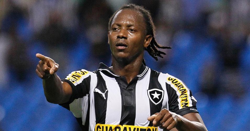Andrezinho comemora gol do Botafogo contra Palmeiras. O atacante balançou as redes, mas não foi suficiente para vencer a partida