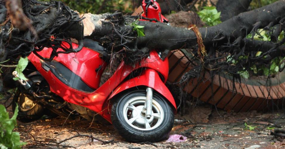 18.ago.2012 - Imagem mostra motocicleta destruída sob árvore caída em rua de Hanói, no Vietnã. A passagem do Tufão Kai-Tak, que trouxe inundações e ventos fortes para o país, causou destruição e a morte de ao menos quatro pessoas