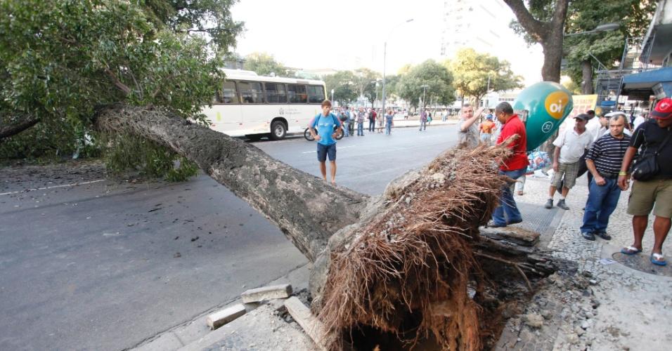 20.ago.2012 - Uma árvore caiu em cima de um ônibus na praça Tiradentes, no Rio de Janeiro, e causou a interdição da rua Visconde do Rio Branco, nesta segunda-feira (20). O Corpo de Bombeiros não divulgou informações sobre feridos