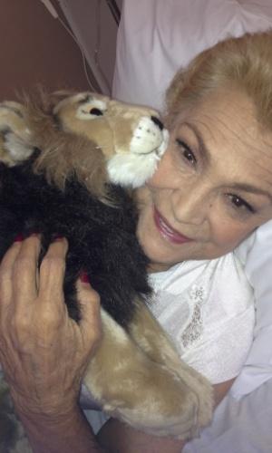 Internada em hospital, Hebe Camargo divulga imagem com bicho de pelúcia (22/8/2012)