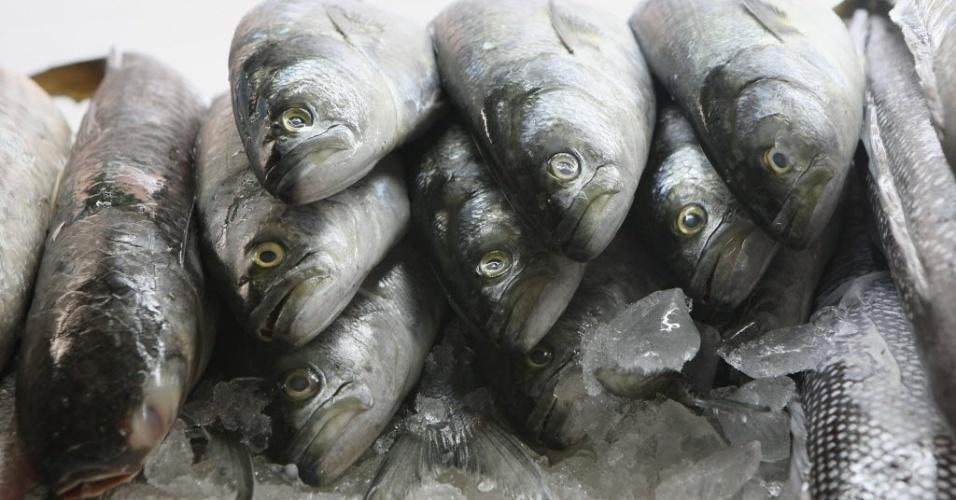 Anchova, aliche, peixes