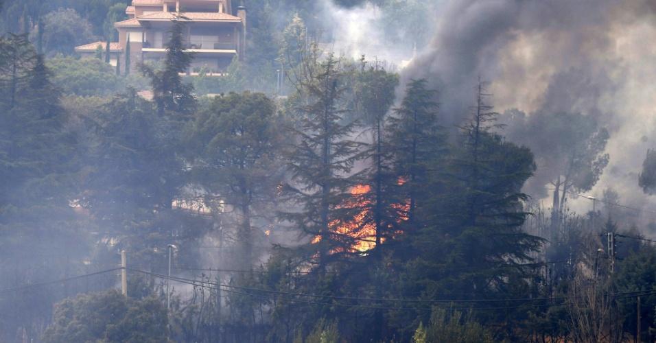 27.ago.2012 - Uma área florestal entre Robledo de Chavela e Valdemaqueda, a 60 km de Madri,  na Espanha, foi atingida por um incêndio nesta segunda-feira (27). Devido à rapidez com que as chamas se espalharam, sete casas foram evacuadas