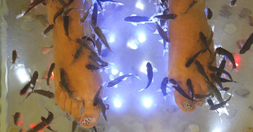 29.ago.2012 - Mulher se submete a tratamento com peixes garra rufa, conhecidos também como peixes-médicos, em salão de beleza de Madri, na Espanha, para fazer um peeling natural nos pés. Os peixes comem as células mortas
