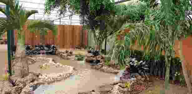 Paraíso Ecológico criado por Paulo Y. Kai, Rogério L. de Oliveira e Nivaldo Dellagostini, na 31ª Expoflora - Humberto de Castro/ Divulgação