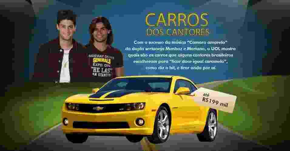 Veja os carros usados por músicos brasileiros   - Arte/UOL