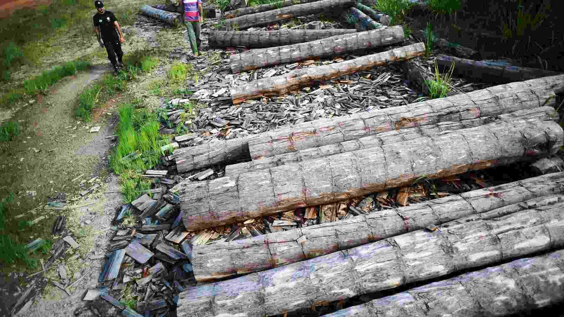 04.set.2012 [ foto de arquivo] - Agente do Incra (Instituto Nacional de Colonização e Reforma Agrária) apreende madeira extraída ilegalmente da Amazônia - Lunae Parracho/Files/Reuters/02.jun.2012