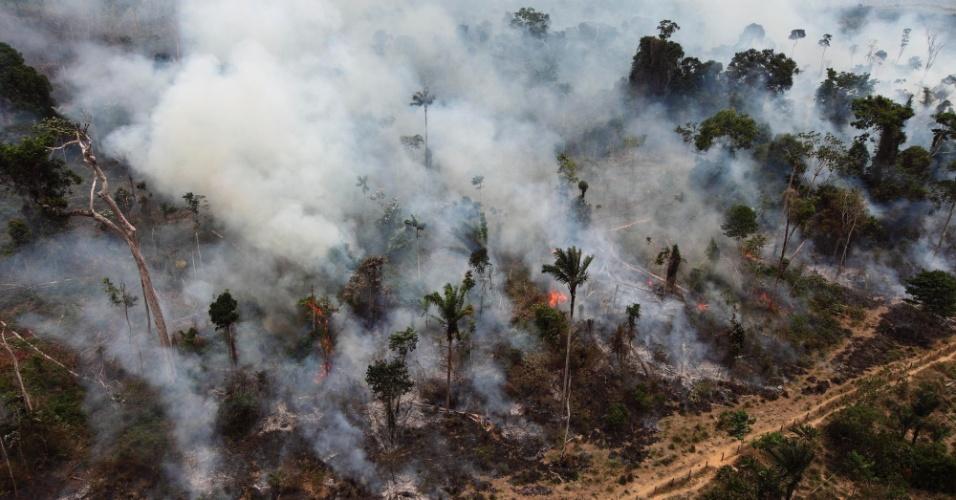 04.set.2012 [ foto de arquivo] -Queimada ilegal atinge parte da floresta Amazônica no Pará