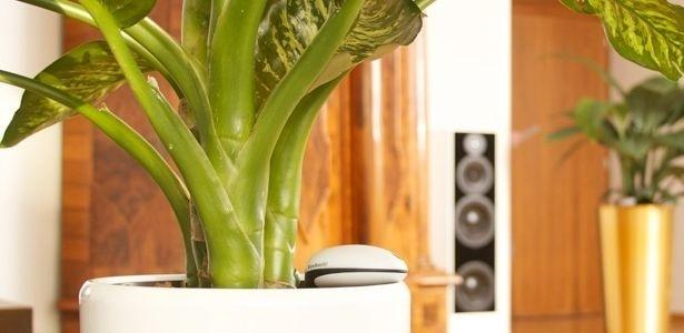 d3d6e56cc Sensor sem fio monitora sinais vitais de plantas em tempo real ...