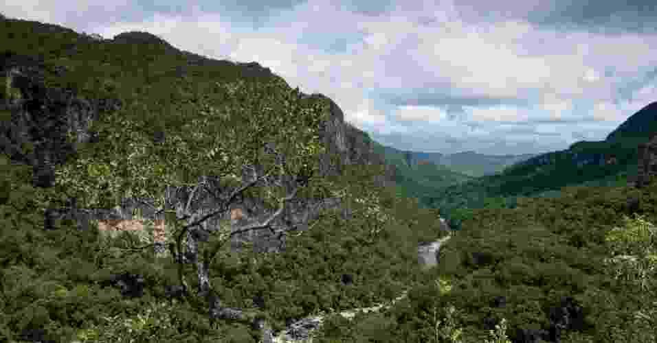 Parque Nacional Chapada dos Veadeiros, em Goiás, revelam os rios e montanhas do Cerrado  - Sterling Zumbrunn/CI/Divulgação