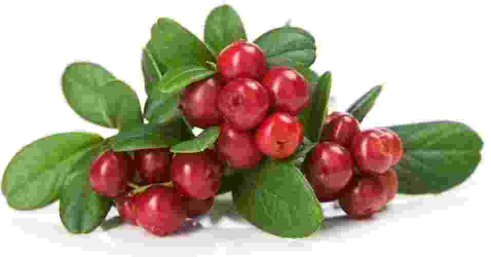 Cranberry, oxicoco - Getty Images