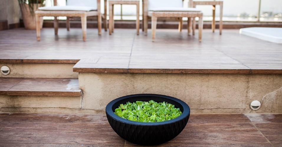 A paisagista Jaíce Di Prospero (www.jaicediprospero.com.br) montou uma floreira com plantas aquáticas flutuantes em um vaso impermeável concha, feito de sucata plástica reciclada