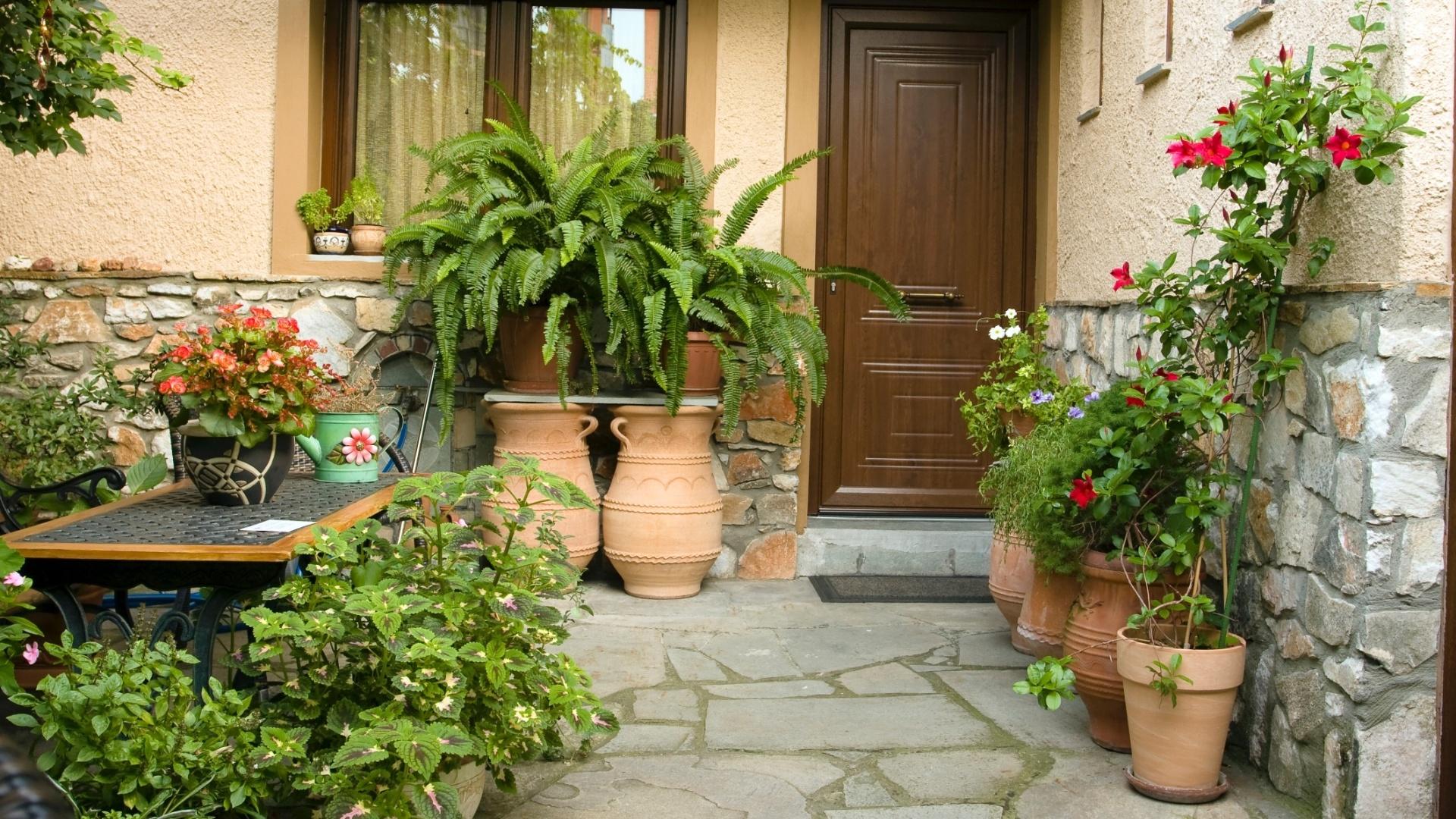 Conheça os erros mais comuns em jardinagem e cuide da saúde de suas plantas  - 22 09 2012 - UOL Universa ae2fba227ec
