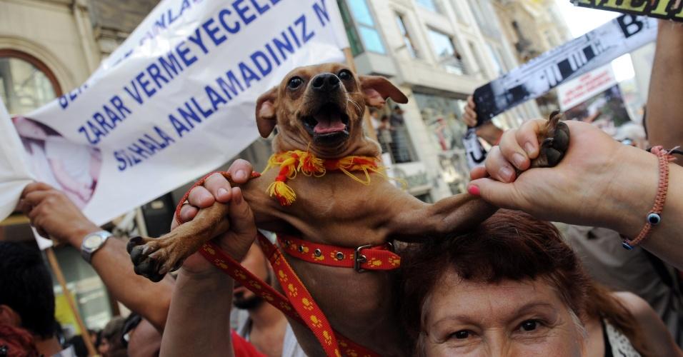 1º.out.2012 - A proposta vai ser levada neste mês de outubro para discussão no Parlamento turco