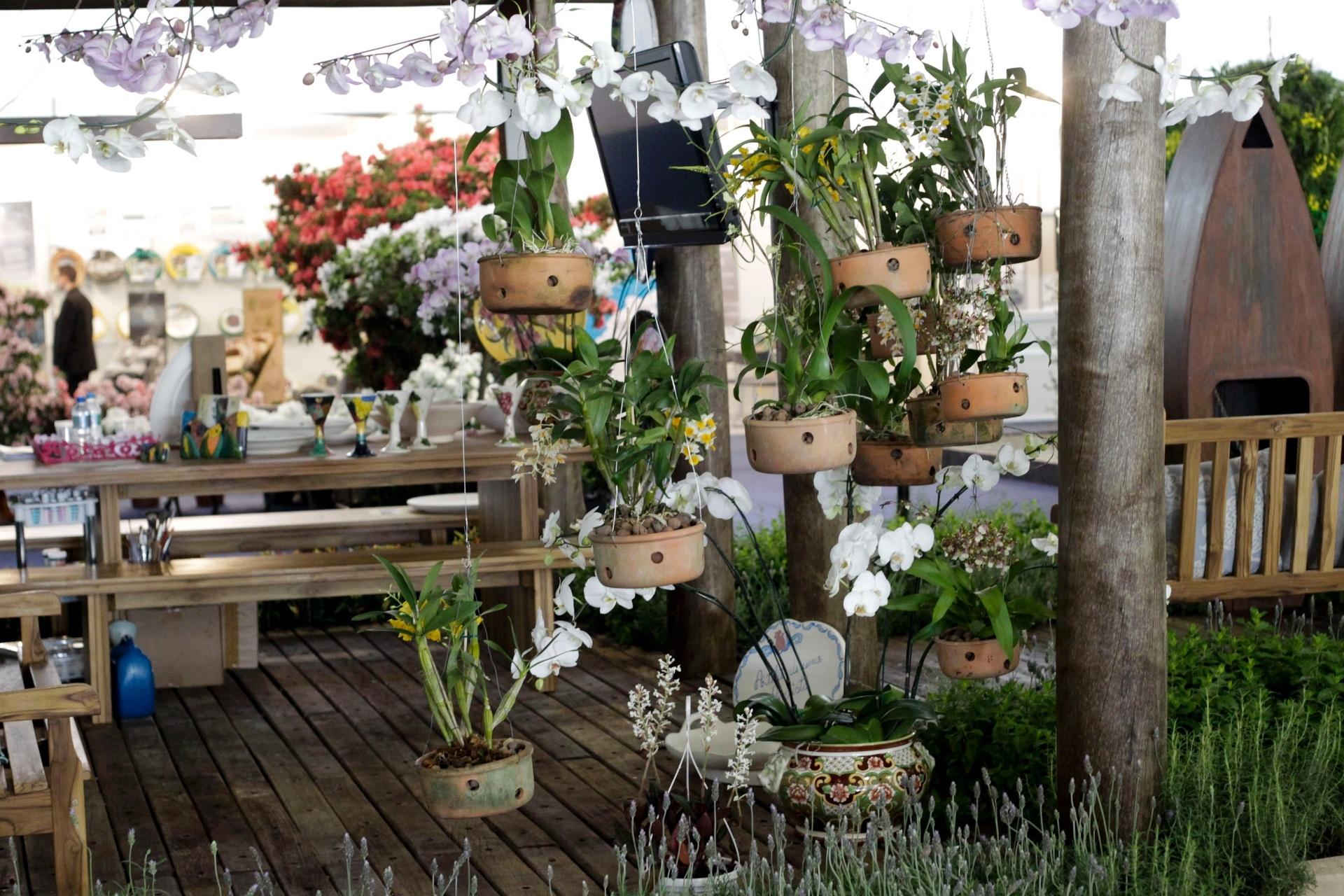 Na entrada, as orquídeas de espécies variadas compõem o