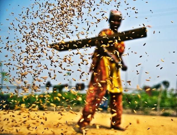 15.out.2012 - Sazzid Ahmed, de Bangladesh, priorizou um outro aspecto da sustentabilidade ao enviar a imagem de título ?Grão? para a competição.
