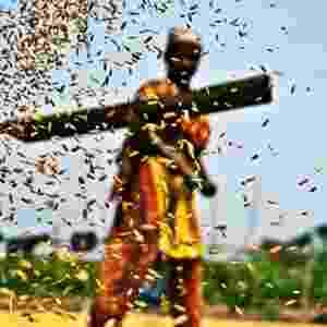 """Sazzid Ahmed, de Bangladesh, priorizou um outro aspecto da sustentabilidade ao enviar a imagem de título """"Grão"""" para a competição. - Sazzid Ahmed/Chidlren's Eyes on Earth 2012"""