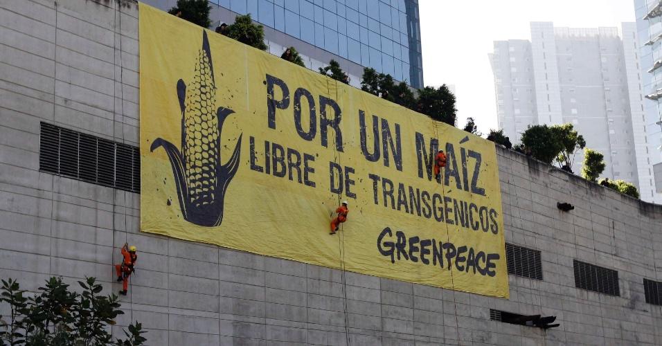 """16.out.2012 - No Dia Mundial da Alimentação, ativistas do Greenpeace estendem banner gigante durante protesto no prédio da Monsanto, na Cidade do México, no México. No banner está escrito """"por um milho livre de transgênicos"""""""