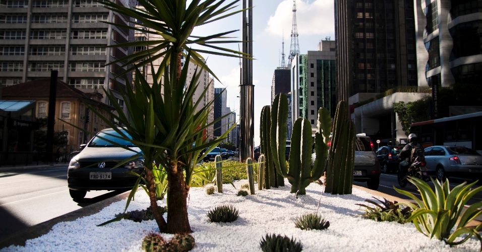 17.out.2012 - Canteiro central da avenida Paulista ganha jardinagem. Próximo à rua Teixeira da Silva. Toda extensão da avenida deve ganhar novo paisagismo até 2013, segundo o projeto