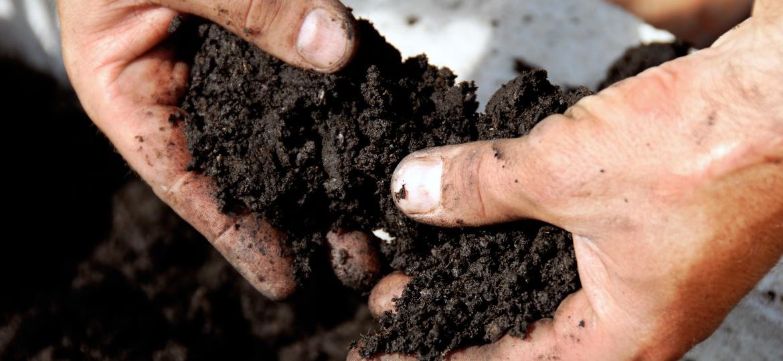 Terra de compostagem - Getty Images