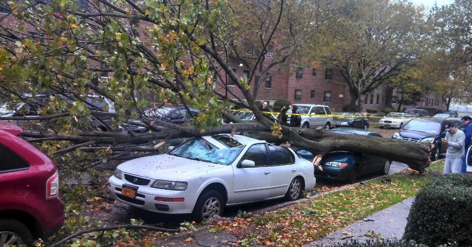 29.out.2012 - Árvore cai sobre carros em Nova York durante os primeiros efeitos do furacão Sandy, que se aproxima da