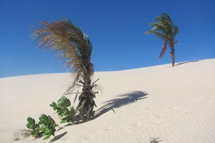 As dunas da Praia do Saco são mais uma opção de lazer para os turistas