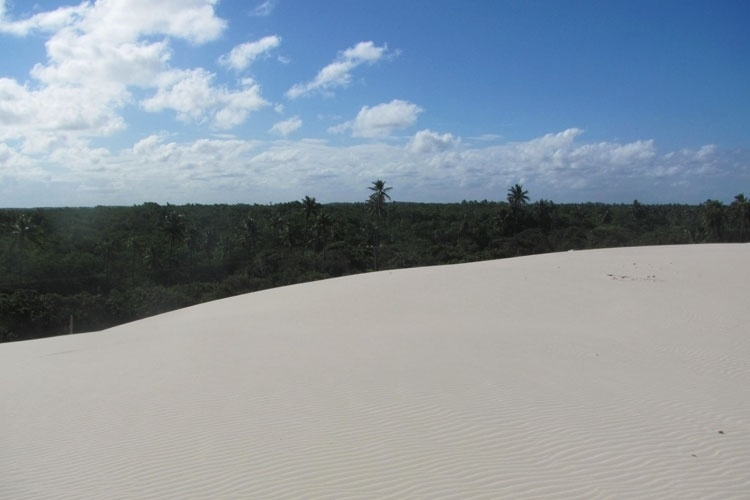 Os passeios de buggy pelas suntuosas dunas duram cerca de 40 minutos