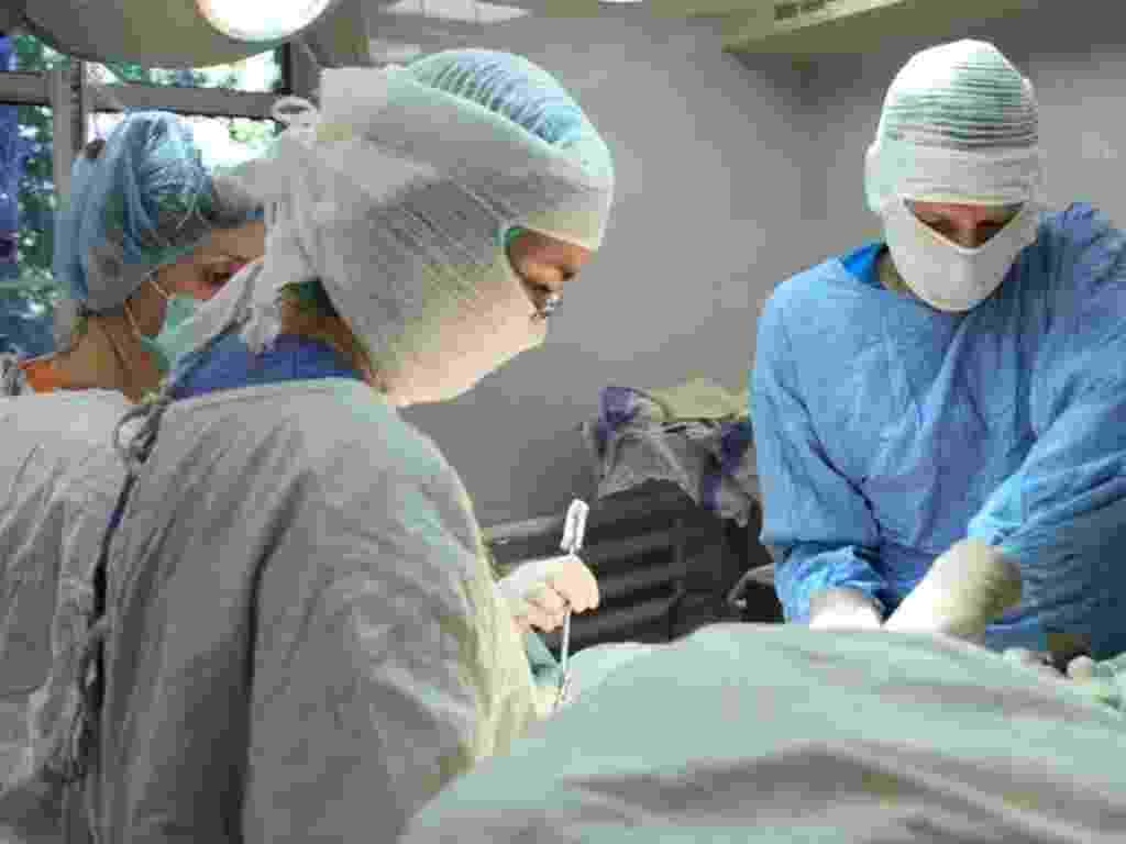 médico, hospital, cirurgia, procedimento, hospital, emergência, doente, doença, maca, saúde - Shutterstock