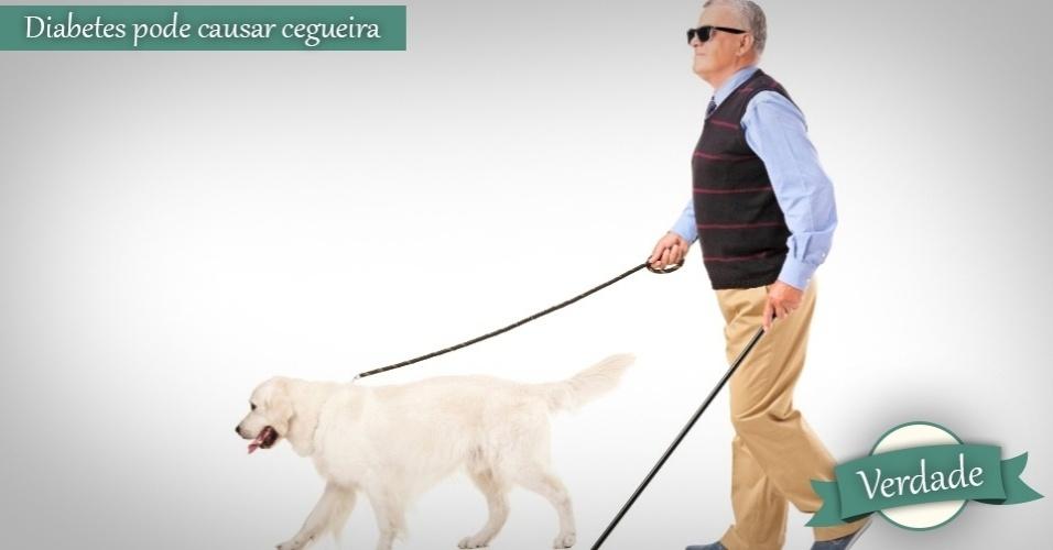 cego com cão guia, mito ou verdade