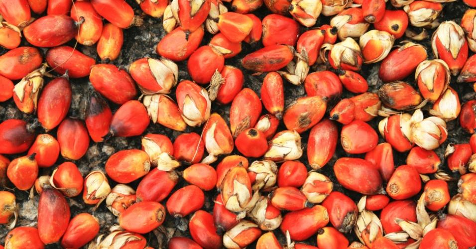 fruto do dendezeiro, dendê, óleo de palma, óleo de dendê
