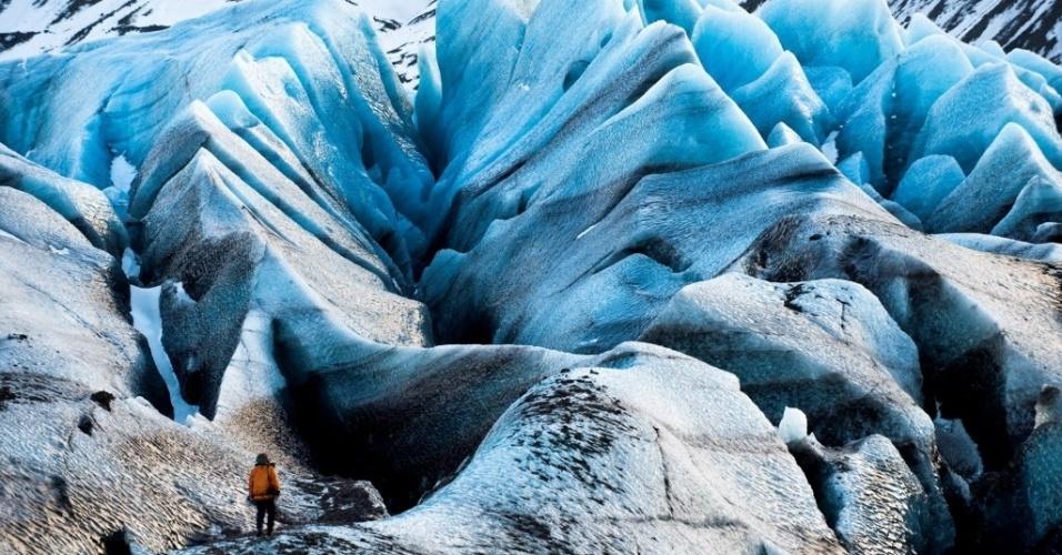 26.nov.2012 - Uma expedição russa no Ártico afirma que o aquecimento global, que reduz a superfície da camada de gelo precocemente, está levando mais pássaros, plantas, fungos e mosquitos à região gelada. Entre os animais, foram encontradas quatro espécies de pássaros incomuns para o arquipélago - gaivota de Sabine, gaivota grande, pato marinho de cauda longa e marrecos -, três novas classes de mosquitos e baleias-fin, que é típica do hemisfério Sul