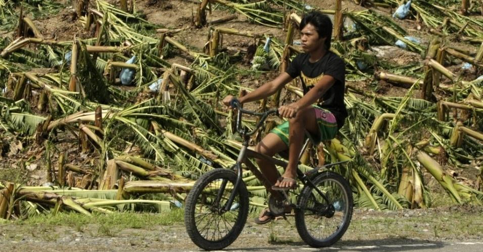 5.dez.2012 - Filipino passa de bicicleta por plantação de bananas destruída após a passagem do tufão Bopha pelo sul das Filipinas