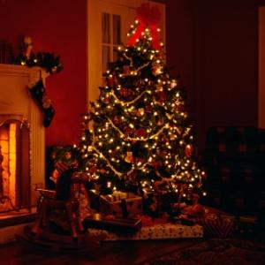 Fórmula de trigonometria monta árvore de Natal perfeita - Comstock/Getty Images